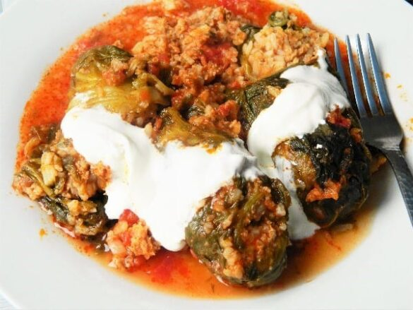 best stuffed cabbage rolls with sour cream