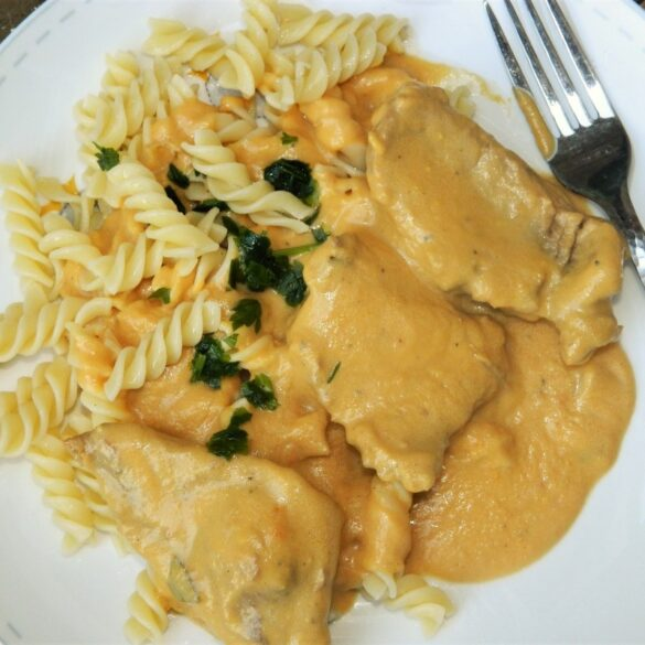Hungarian Hunter's Stew Recipe-Served on Plate With Pasta