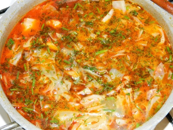 Best Cabbage Soup Recipe-Boiling Cabbage Soup With Dill