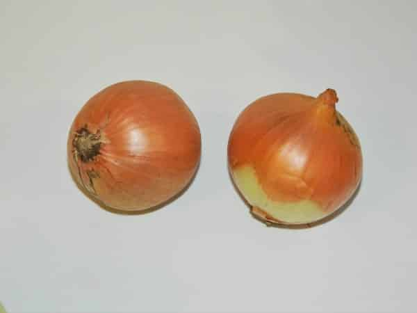 Best Cabbage Soup Recipe-Two Medium Size Onions