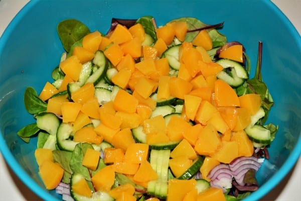 Best Leftover Turkey Salad Recipe-Cut Cubes Peach, Sliced Onion and Cucumber on Bistro Salad in the Bowl